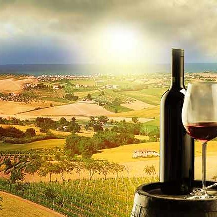 portfolio-winetour